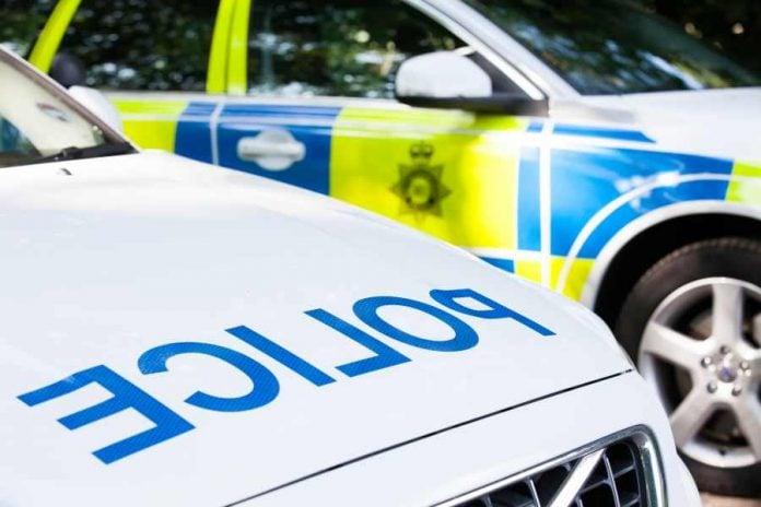 generic police cars x2 9