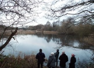 Visitors to the starling murmuration at Attenborough Delta Reed Bed 10th January 2019
