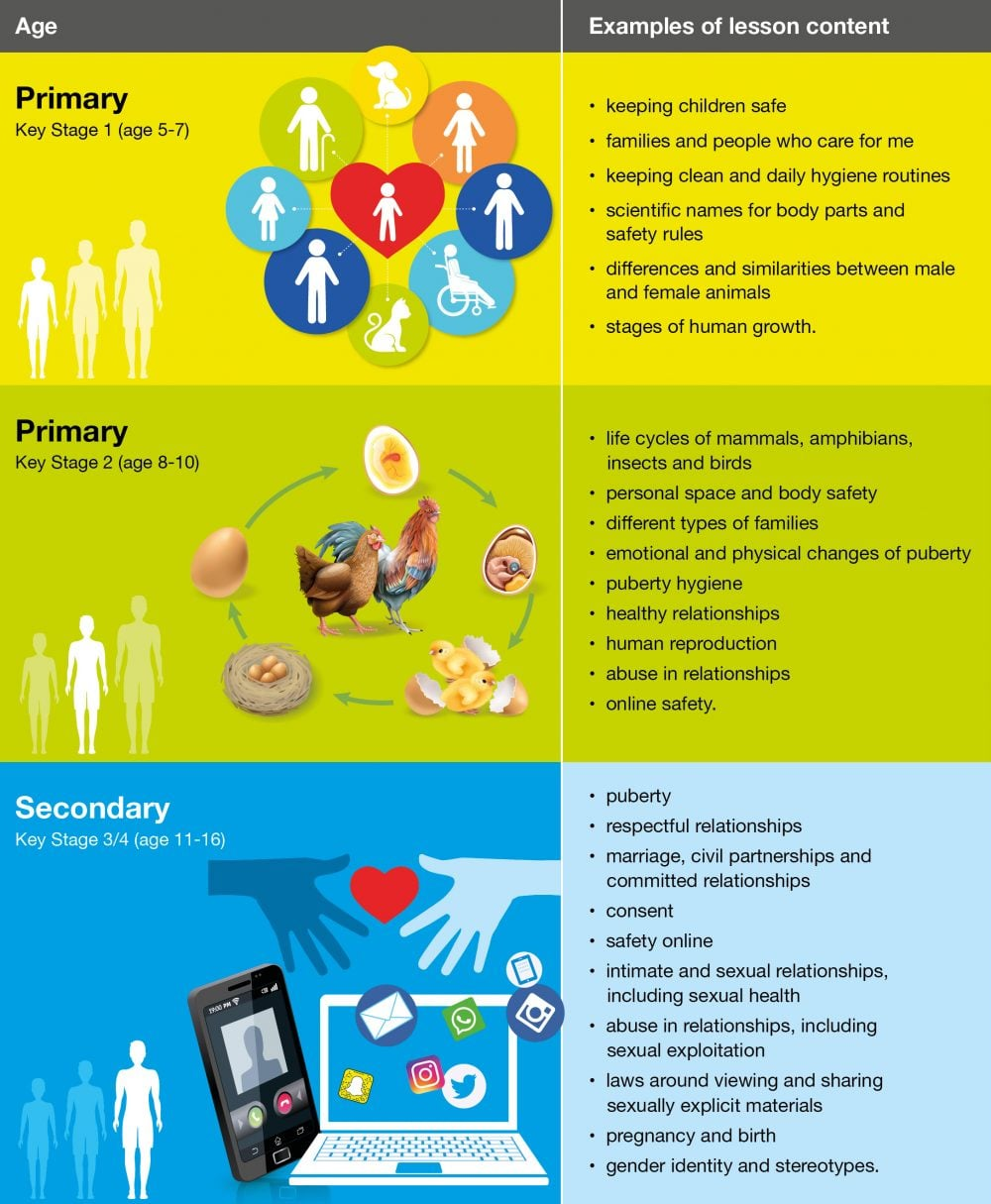 RSE Infographic