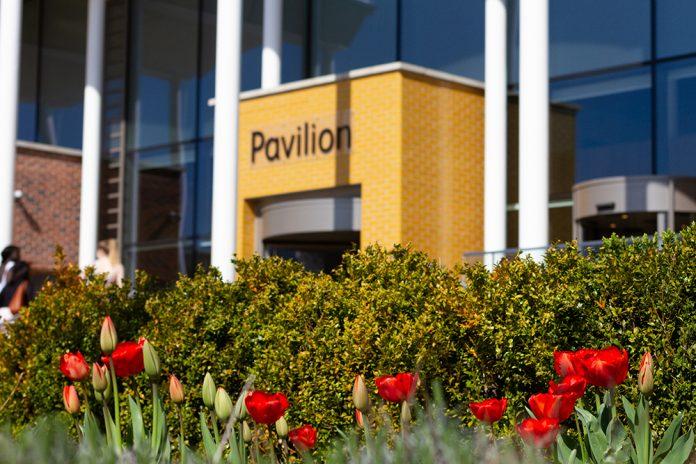 Pavilion Clifton Campus carbon negative