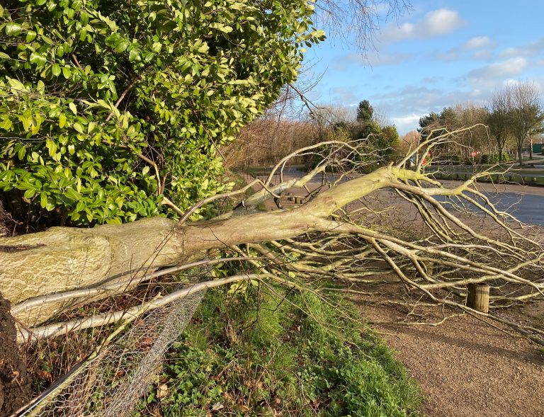 Storm Dennis latest forecast – Hour-by-hour: Weekend weather warnings for Nottinghamshire
