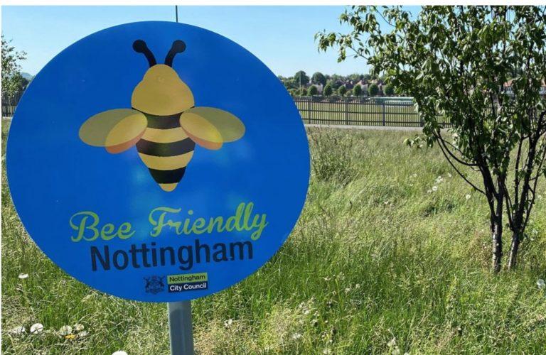 Lockdown helps Nottingham city efforts to nurture bee-friendly spaces