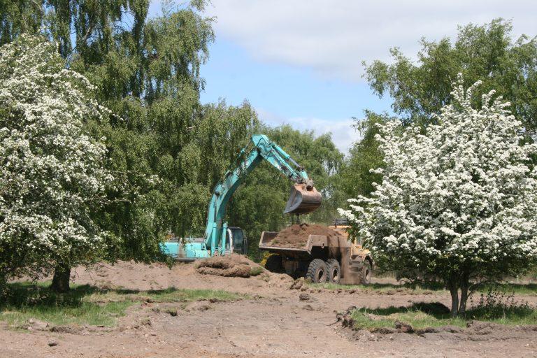 Long-term habitat restoration at Sherwood Forest nature reserve gets underway