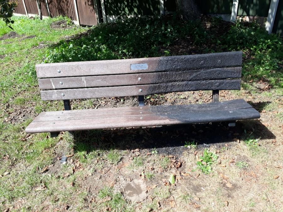 26Aug Village Hall Park Bench