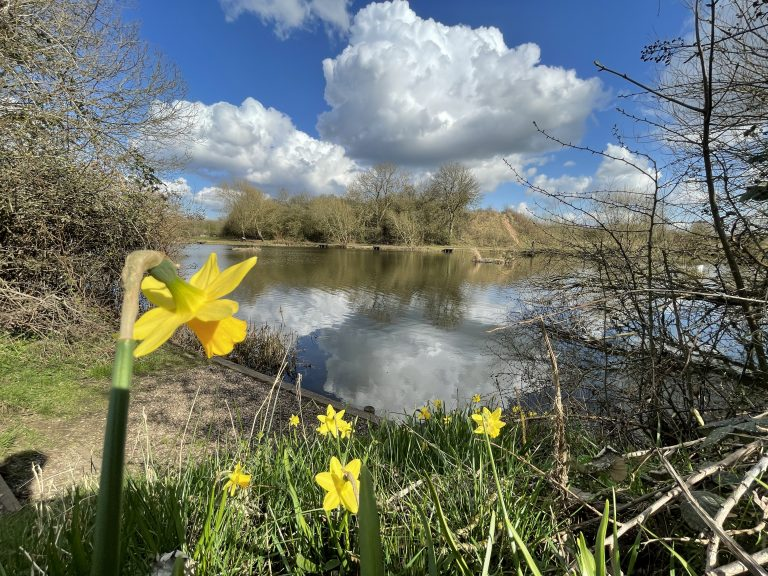 Weather: A cold snap and then mild and wet before Easter, says Met Office