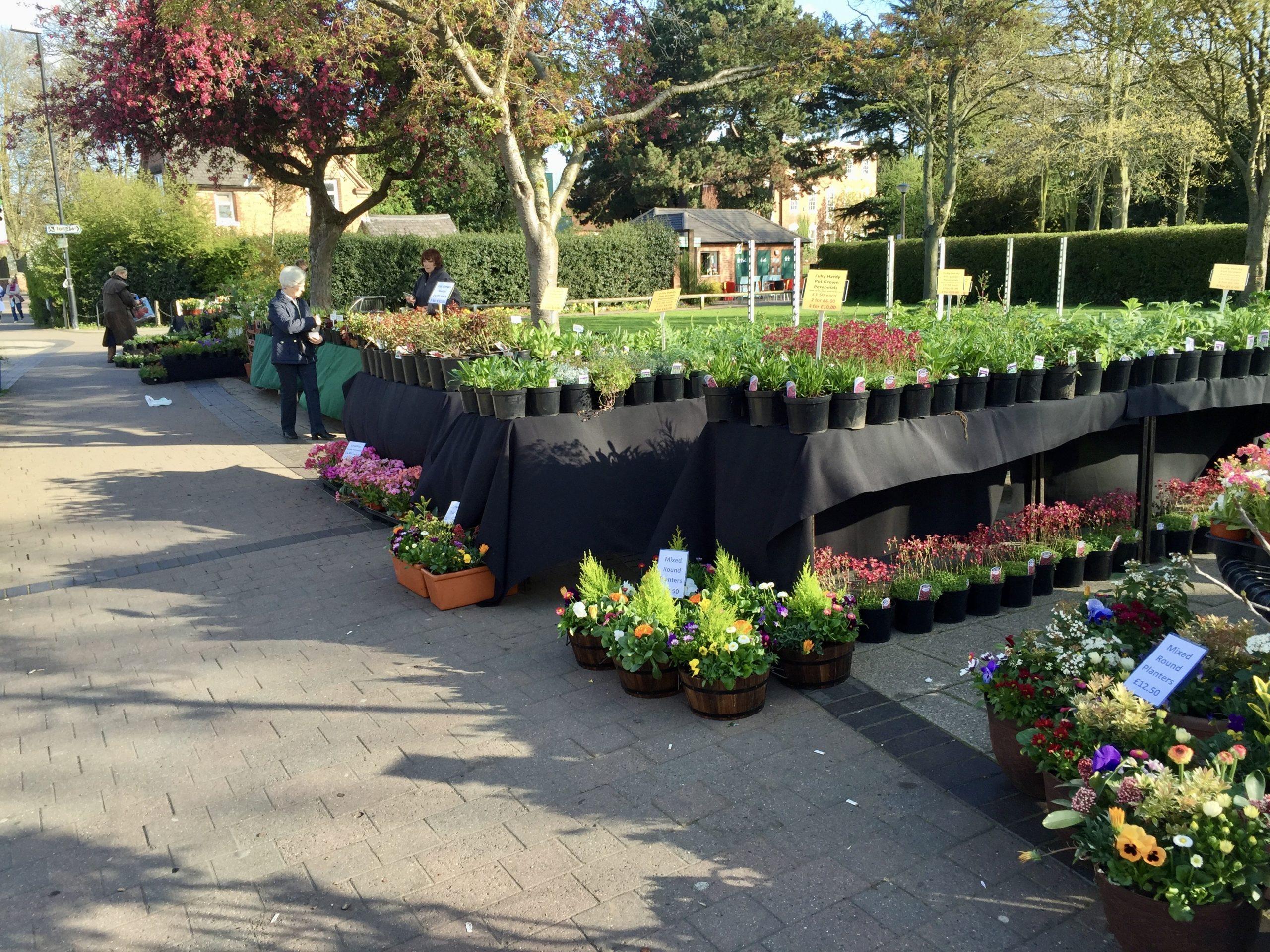 plant fair