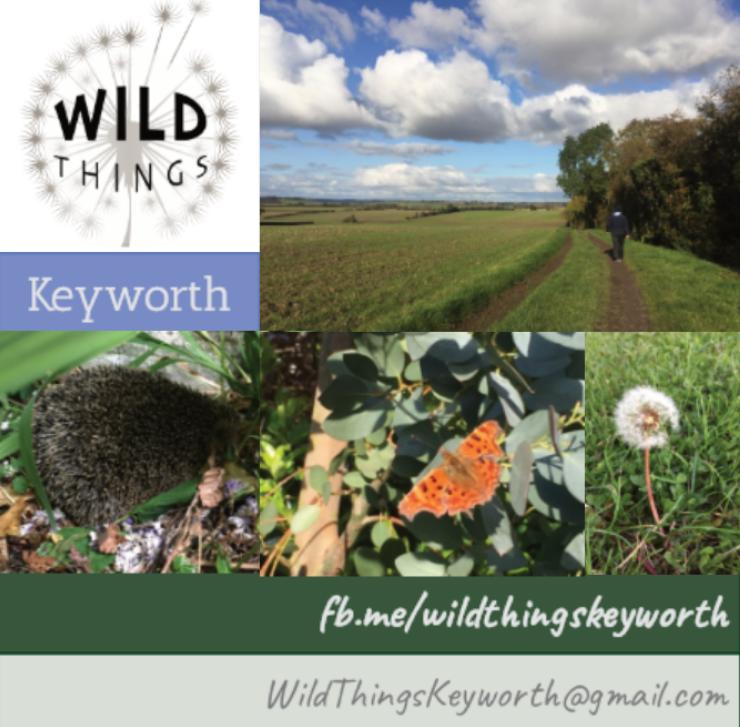 Wild Things Keyworth montage